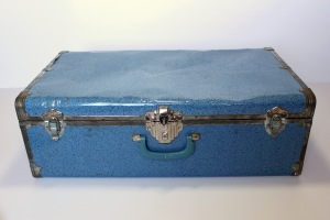 Blue Suitcase Trunk a