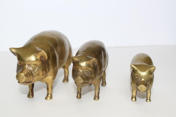 Brass Pigs a