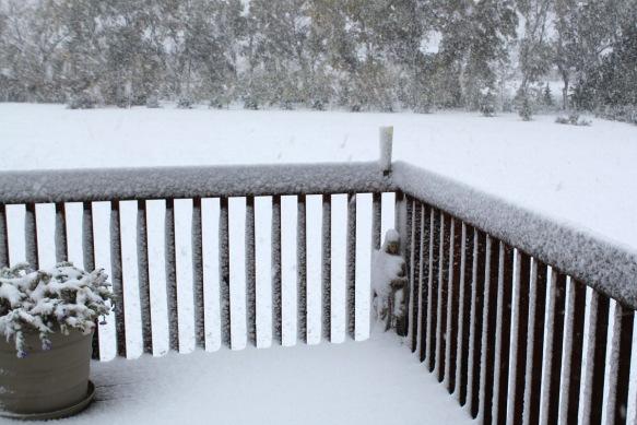 3 pm Snow