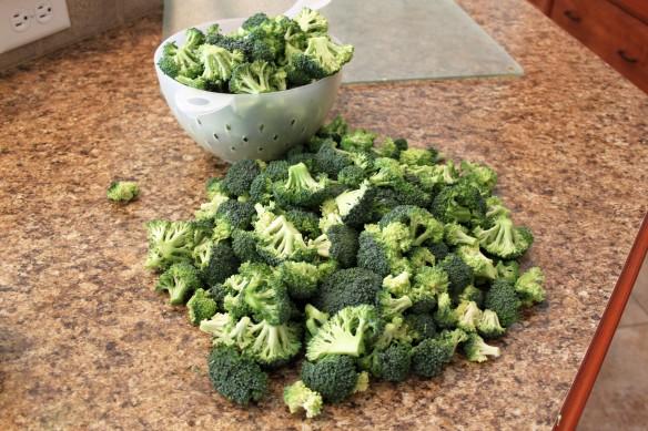 Broccoli b