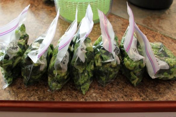Broccoli g